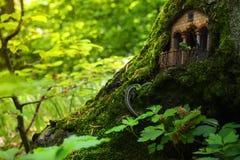 Dom jaszczurki wśród mech w zwartym lesie Zdjęcia Royalty Free
