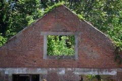 Dom jedzący roślinnością Zdjęcia Royalty Free
