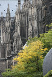 Dom in Koln Royalty-vrije Stock Fotografie