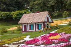Dom kwiaty fotografia royalty free