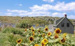 Dom na Monhegan wyspie Obrazy Royalty Free