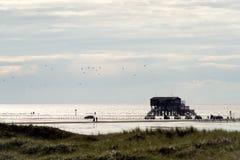 Dom na stosach, Północny morze Zdjęcia Stock