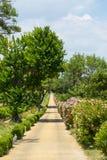 Dom na wsi blisko Montpellier Fotografia Stock
