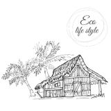 Dom pod drzewkami palmowymi z pokrywającym strzechą dachem w stylu nakreślenia zdjęcia stock
