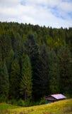 Dom przy lasem Zdjęcie Stock