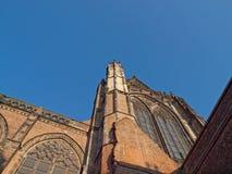 Dom toren in Utrecht Stock Afbeelding