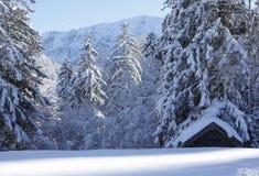 Dom w Alps Obrazy Stock