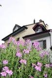 Dom w Brugg Zdjęcie Royalty Free