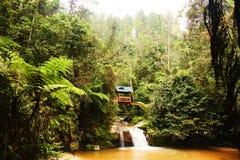 Dom w dżungli nad siklawa fotografia royalty free