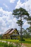 Dom w drewnach Obraz Royalty Free
