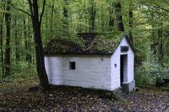 Dom w drewnach Obrazy Stock