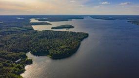Dom w lesie blisko jeziora obraz royalty free