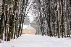 Dom w zimy lasowej Śnieżystej drodze house+ obrazy stock