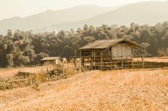 Dom wiejski w wsi Zdjęcia Stock