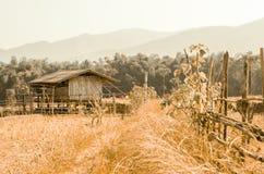 Dom wiejski w wsi Fotografia Stock