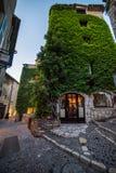 Dom z ścienny pełnym zieleni liście Obraz Stock