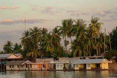 Dom z drzewkami palmowymi na bankach rzeka Zdjęcia Stock