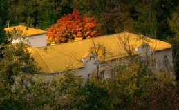 Dom z koloru żółtego dachem Zdjęcia Stock