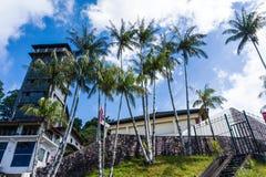 Dom z tropikalnymi drzewkami palmowymi zdjęcia royalty free