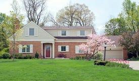Dom z wiosna kwiatami & drzewami Obraz Royalty Free
