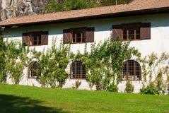 Dom z wspinaczkowymi różami na białej ścianie fotografia stock