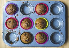 dom zrobił muffins obraz royalty free
