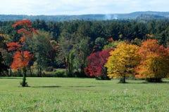 Domaine brillamment couleur un mi jour ensoleillé de la Nouvelle Angleterre d'automne Image stock