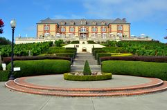 Domaine Carneros vineyard, Napa Valley Stock Photo
