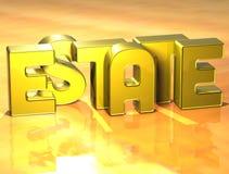 domaine de 3D Word sur le fond jaune Image stock