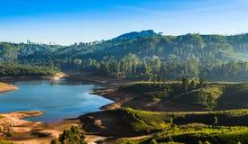 Domaines de thé du ` s de Sri Lanka images stock