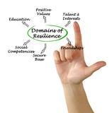Domains of resilience Stock Photos