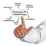 Domains of resilience Royalty Free Stock Photo