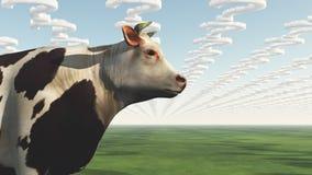 Domanda OMG della mucca Fotografia Stock