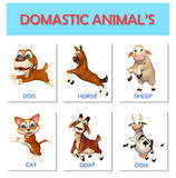 domastic animal chart Stock Photos