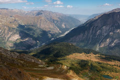 Dombai da montanha Fotografia de Stock