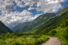 Dombay. Caucasus Mountains in summer Stock Photos