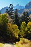 Dombay jesień Fotografia Stock