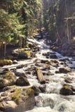 Dombay. Mountain river Murudzhu Royalty Free Stock Photos