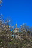 Dome, blue sky and flowering tree Stock Photos