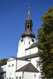 The Dome Cathedral in Tallinn Royalty Free Stock Photography
