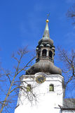 The Dome Cathedral in Tallinn. Stock Photography