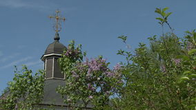 Dome of church and lilac bush on sky background stock video footage