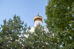 The dome of the Church. In the ornament of vegetation royalty free stock photos