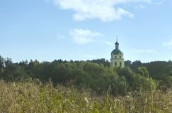 Church. Dome of church between trees on sky background Royalty Free Stock Photos