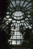 Dome in greenhouse. Big dome of the historic royal greenhouse brussels, belgium Stock Image