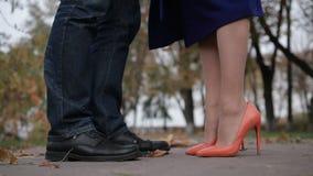 Dome o beijo de pares românticos novos no dia do outono video estoque
