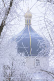 Dome of the Orthodox Church. Is visible behind the branches of trees covered with frost stock photos