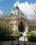 Dome of the Petit Palais, entrance off the courtyard Royalty Free Stock Photography