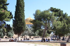 Dome of the Rock - Temple Mount - Jerusalem - Israel Stock Photos
