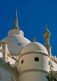 Dome of Saint Louis Cathedral, Carthage Stock Image